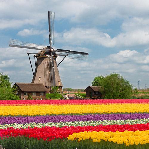 Netherlands-02